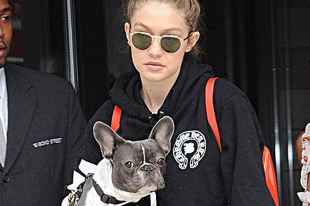 Дама с собачкой: Джиджи Хадид и ее французский бульдог на прогулке в Нью-Йорке