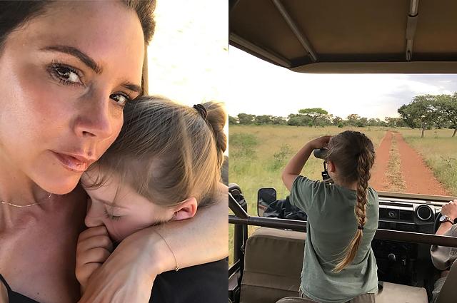 Виктория и Дэвид Бэкхем продолжают отдыхать в Африке: встреча их дочери Харпер со львом и другие яркие моменты путешествия