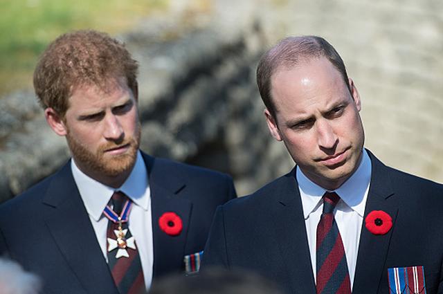 Принц Гарри и принц Уильям рассказали, как узнали о смерти принцессы Дианы
