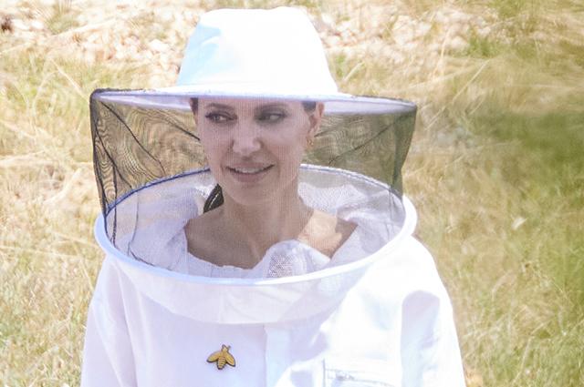 """Анджелина Джоли прилетела в Прованс: костюм пасечника и ужин с выпускницами программы """"От женщин пчелам"""""""